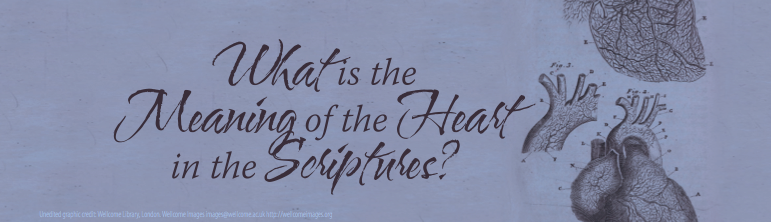 What is the meaning of the Heart in the Scriptures?