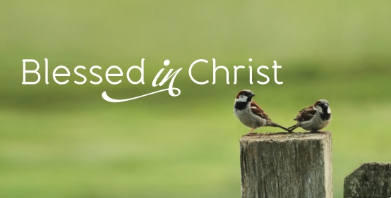 Blessed in Christ